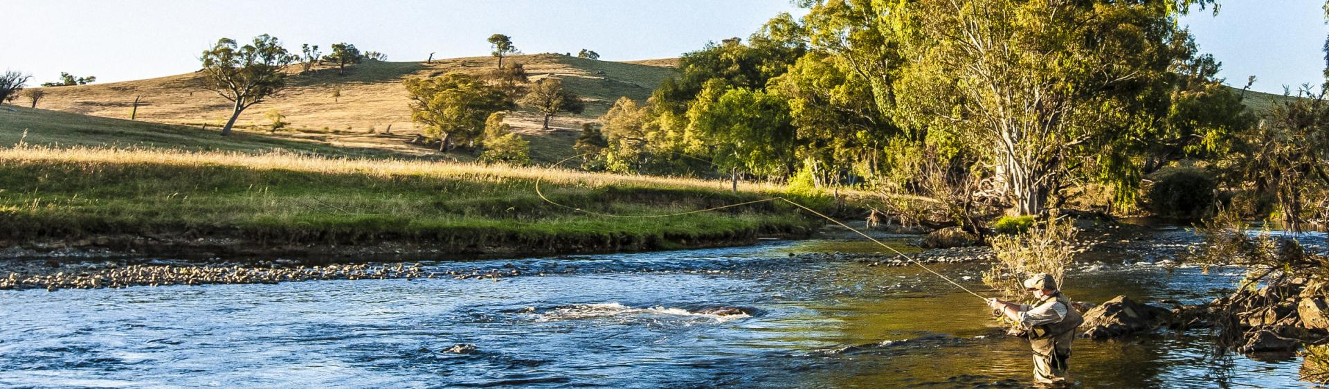 Fly Fishing in Tumut