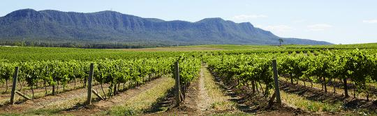 Wine regions, Hunter Valley